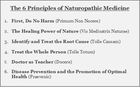 The 6 Principles of Naturopathic Medicine final